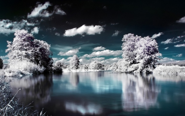 Snowy Trees Lake Reflection (click to view)