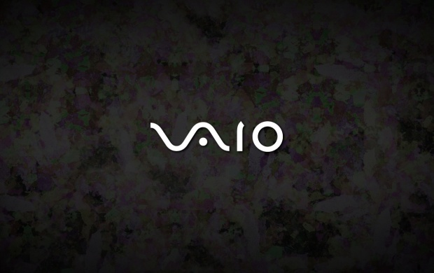 Sony Vaio (click to view)