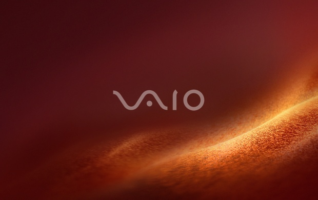 Sony Vaio Brown (click to view)