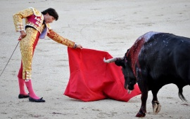 Spain Bull Fighting