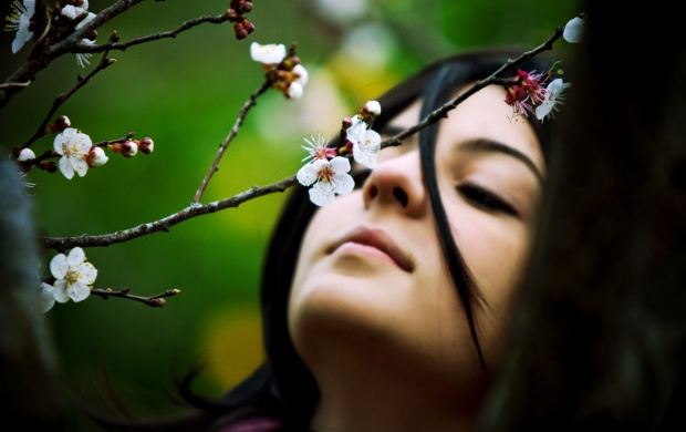 Spring Girl In Tree Flower (click to view)