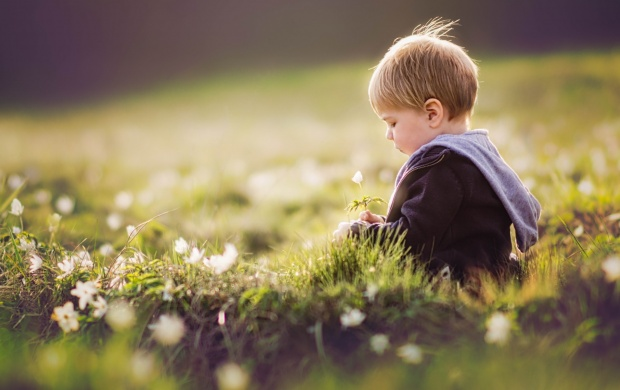 Spring Summer Flowers Boy (click to view)
