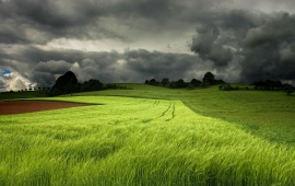 Storm Clouds Over a Green Field