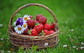 Strawberries Basket And Flowers