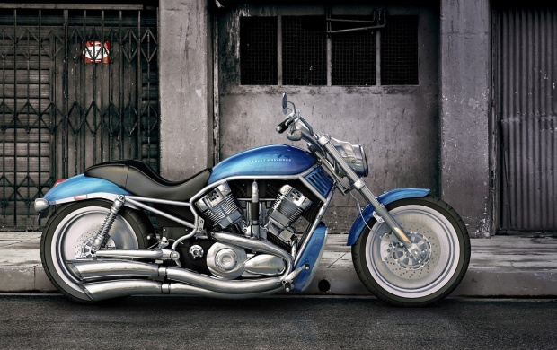 Street Harley Davidson Motorcycle (click to view)