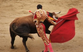 Styles Of Bullfighting