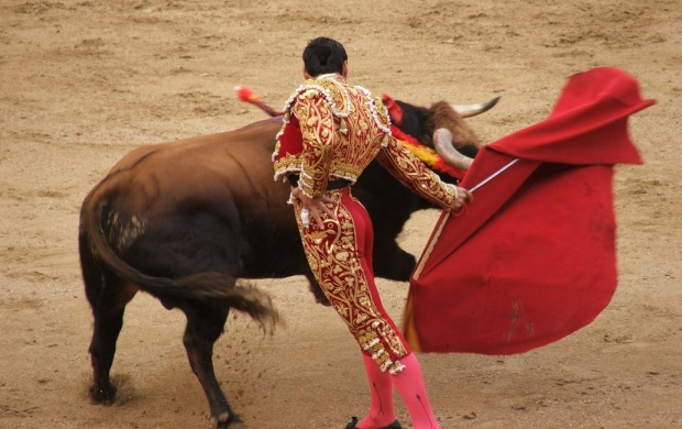 Styles Of Bullfighting (click to view)