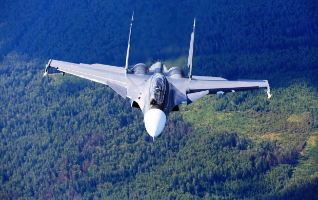 Sukhoi Su-30 Forest (click to view)