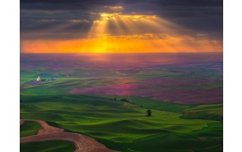 Sun-rays Over Green Fields