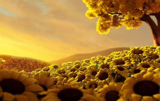 Sunflower World (click to view)