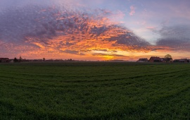 Sunset Over Green Field