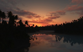 Sunset Over Lake and Palms