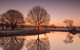 Sunset River Trees Landscape