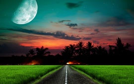 Sunset Road Grass Moon