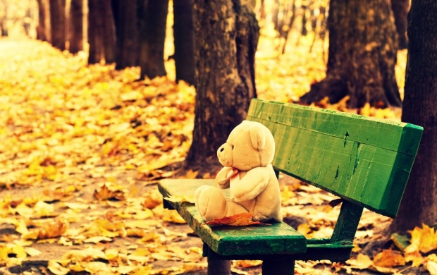 Teddy Bear Sitting On Bench (click to view)