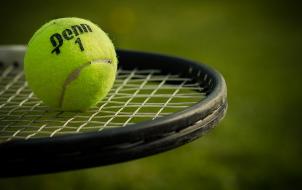 Tennis Ball And Racket Sports (click to view)
