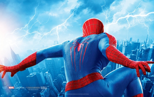 The Amazing Spider Man 2 2014 Banner (click to view)