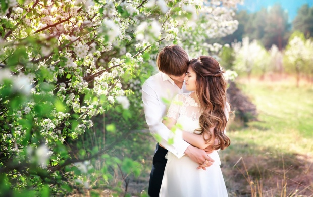 The Groom Love Spring (click to view)
