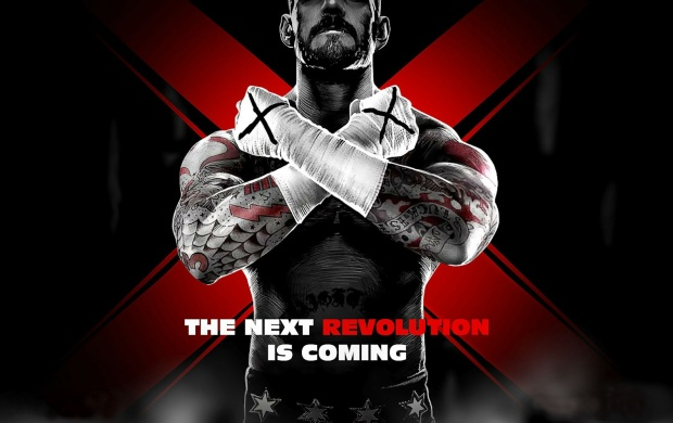 The Next Revolution Is Coming CM Punk (click to view)