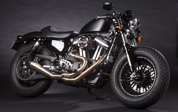 The Punisher Forty-Eight Sportster (click to view)