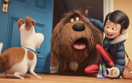 The Secret Life Of Pets Movie Stills