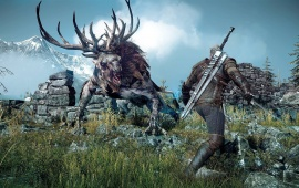 The Witcher 3: Wild Hunt Action Game