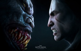 The Witcher 3 Face To Face