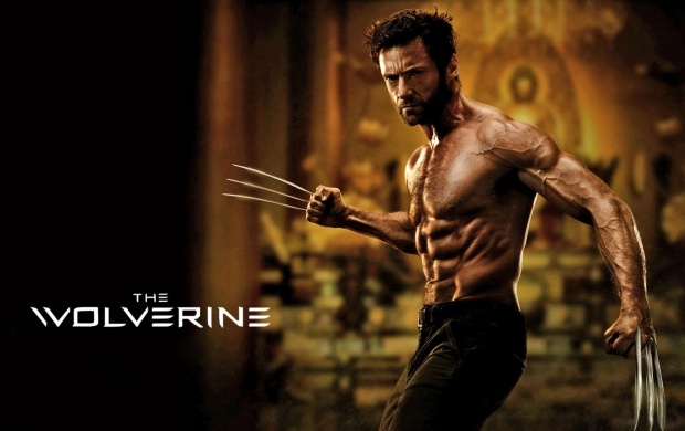 The Wolverine 2013 Movie (click to view)