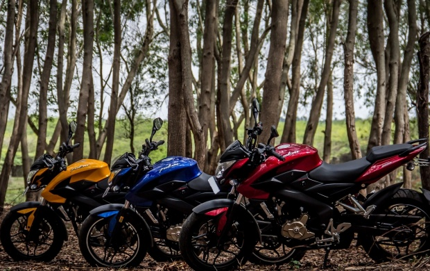 Three Pulsar 200 NS Bikes (click to view)