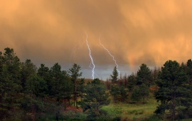 Thunderstorm Over the Forest