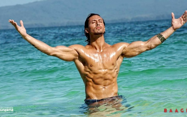 Tiger Shroff Baaghi Movies wallpapers