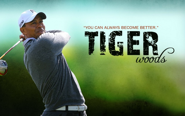 Tiger Wood Best Golf (click to view)