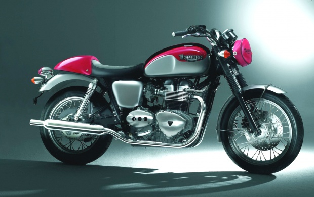 Triumph Bonneville (click to view)