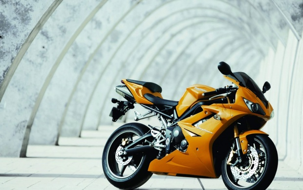 Triumph Daytona (click to view)