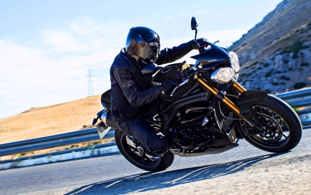 Triumph Speed 94 2016 (click to view)