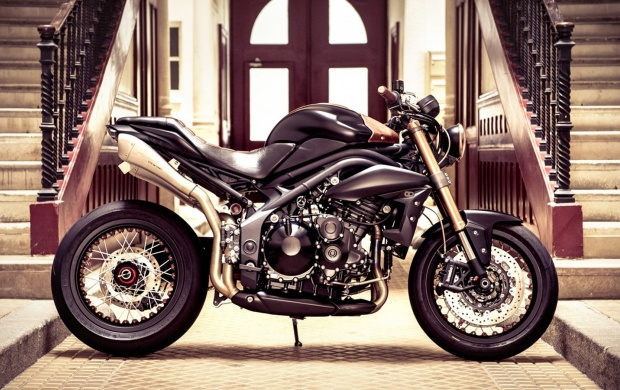 Triumph Speed Triple Cafe (click to view)