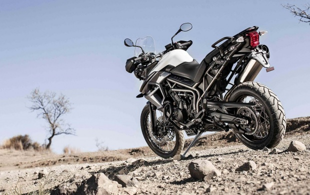 Triumph Tiger 800 XCx (click to view)