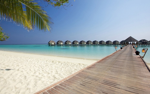 Tropical Beach Bungalows (click to view)