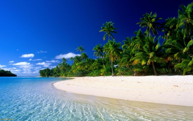 Tropical Beach with White Sand (click to view)