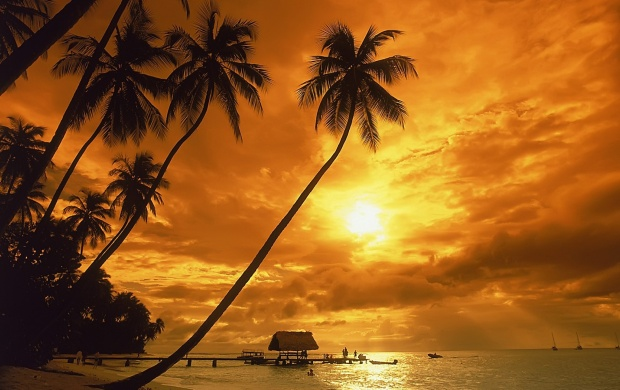 Tropical Sunset (click to view)