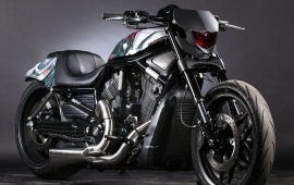 Ultron Night Rod Special V-Rod
