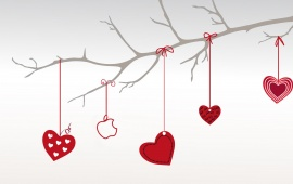 Valentines Day Love Apple