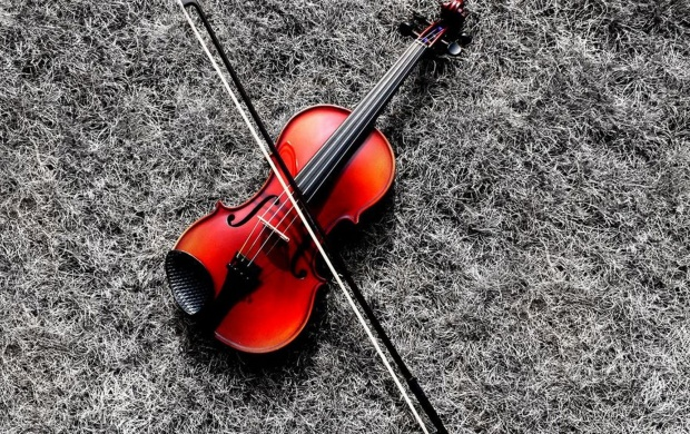 Violin And Its Bow (click to view)