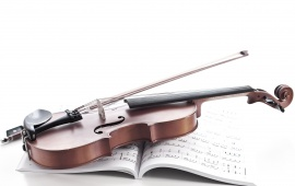 Violin And Music Note Book