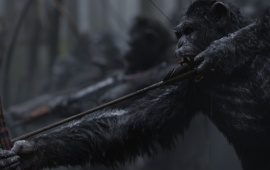 War For The Planet Of The Apes Movie Stills