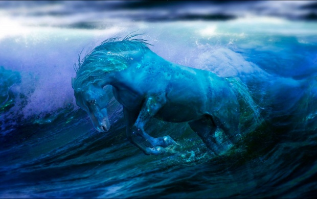 Water Horse (click to view)