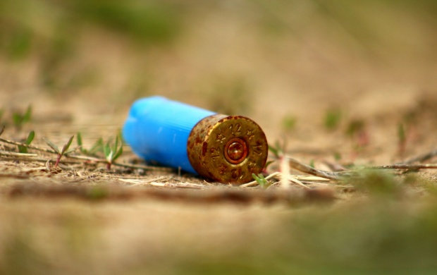 Weapon Cartridge Grass (click to view)