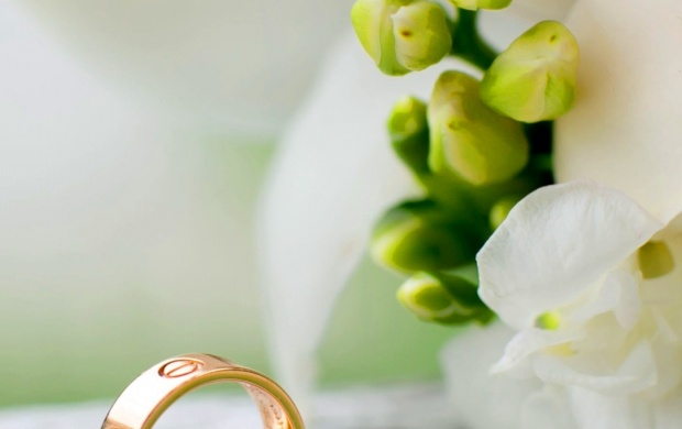 Wedding Rings Flowers (click to view)