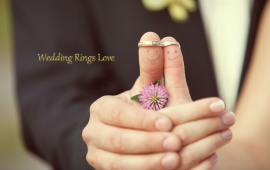 Wedding Rings Love