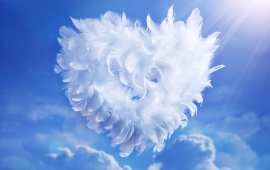 White Feathers Heart